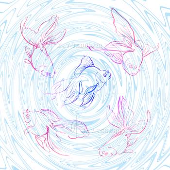 金魚−02.jpg